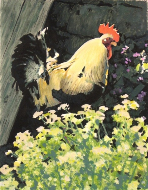 Rooster (colour)
