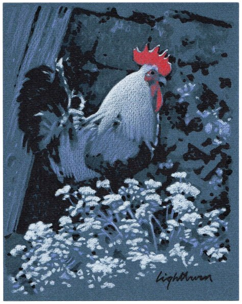 Rooster (nocturne)